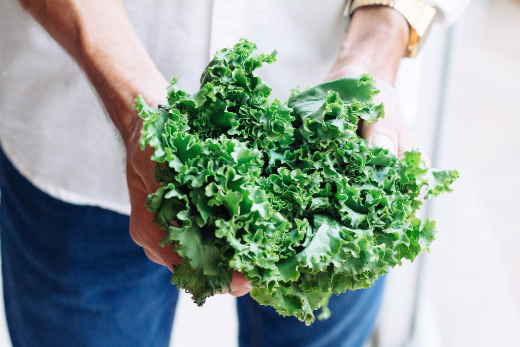 Kale - Food and Nutrition Vitamin - Human Architecture